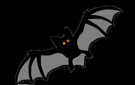 Drawing of a bat by Esme Chiara '21