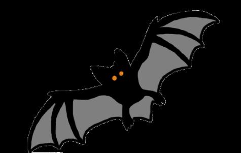 Drawing of a bat by Esme Chiara 21