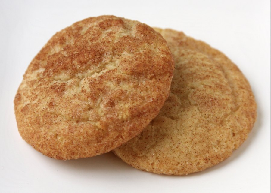 In the Kitchen with Abby! Recipe: Pumpkin Spice Snickerdoodles