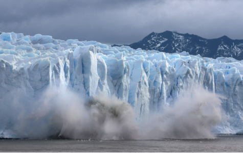 Glacier ice melting and falling into the ocean, contributing to the rising sea levels. (Source: Screenshot from NY Times, David Silverman/Getty Images)