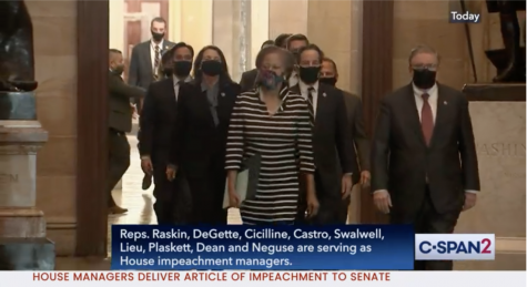 House Managers Delivering the Articles of Impeachment.